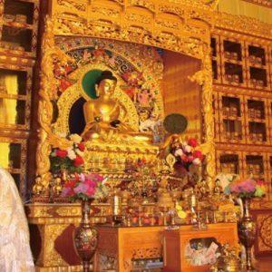 Museum of Tibetan Medicine - 藏文化博物馆